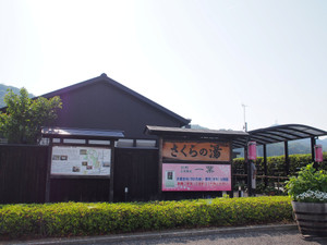 P5295396